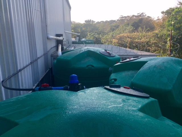 Factory rainwater harvesting system